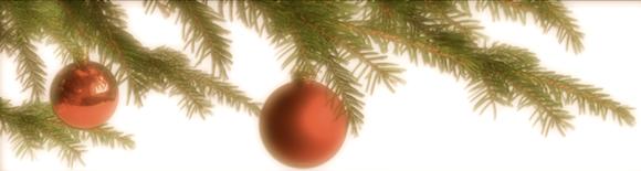 Lerigaus Weihnachts-Top-5